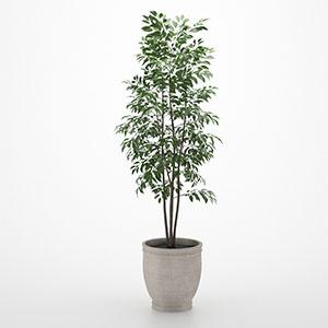 植物花盆栽3D模型-1007P17