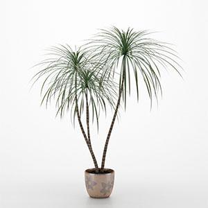 植物花盆栽3D模型-1007P19