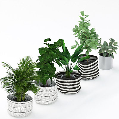 植物花盆栽3D模型-1007P29
