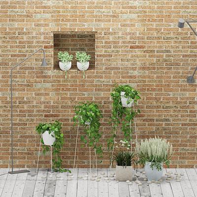 植物花盆栽3D模型-1007P30