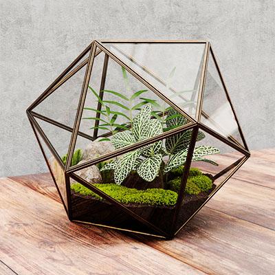 植物摆件3D模型-1008F13