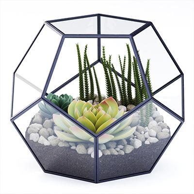 多肉植物摆件3D模型-1008F12