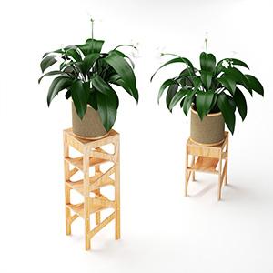 植物盆载3D模型-1007P33