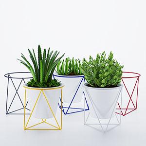 盆栽3D模型-1007P63