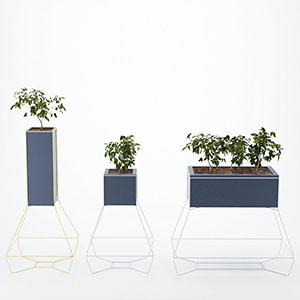 植物盆栽摆设品组合3D模型-1007P66