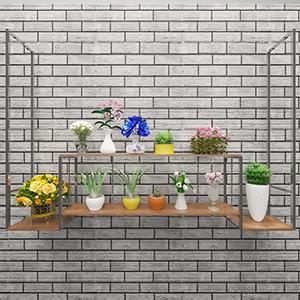 盆栽3D模型-1007P70