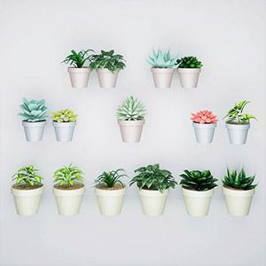 植物盆栽3D模型-1007P77