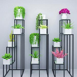 植物盆栽3D模型-1007P79