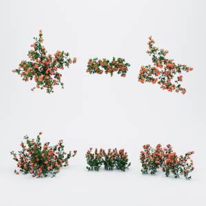 花草灌木3D模型-1002G25