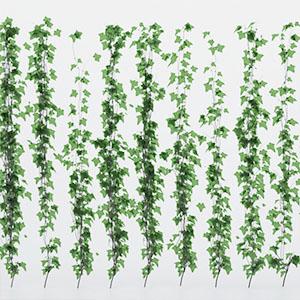 植物藤蔓3D模型-1003T1