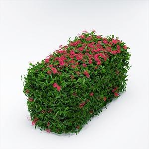 灌木3D模型-1002G34
