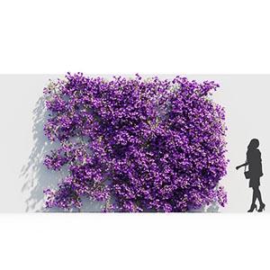 爬藤植物3D模型-1003T12