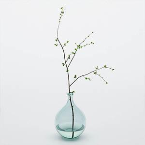 植物花瓶3D模型-1008F61