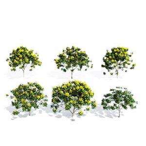 花树3D模型-100102S44