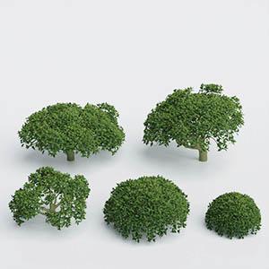 花草3D模型-1009H69