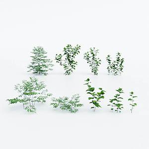 灌木3D模型-1002G38