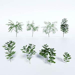 灌木3D模型-1002G40