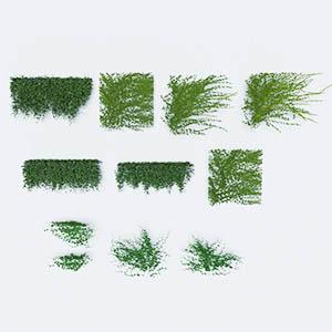 爬藤植物3D模型-1003T20