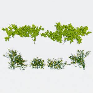 爬藤植物3D模型-1003T22