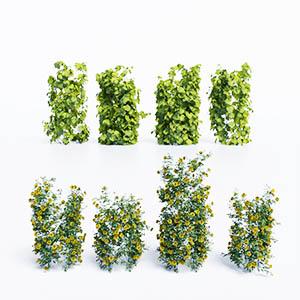爬藤植物3D模型-1003T23