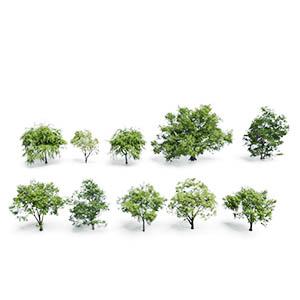 树3D模型-100101S54