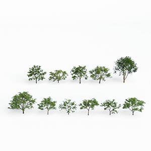 树3D模型-100101S60