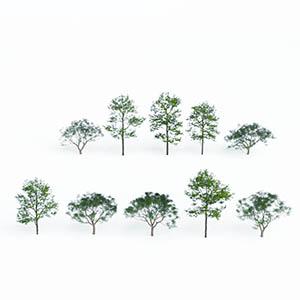 树3D模型-100101S62