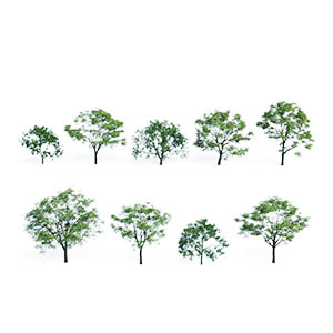 树3D模型-100101S64