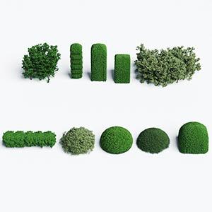 灌木3D模型-1002G41