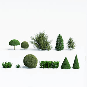 灌木3D模型-1002G42