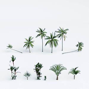 热带树3D模型-100101S68