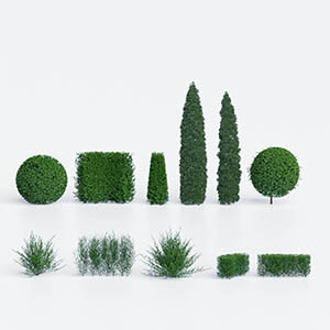 灌木3D模型-1002G45