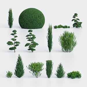 灌木3D模型-1002G46