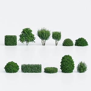 灌木3D模型-1002G47