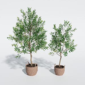 盆栽3D模型-1007P86