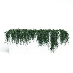 爬藤植物3D模型-1003T30