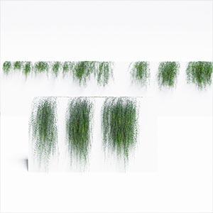 爬藤植物3D模型-1003T34