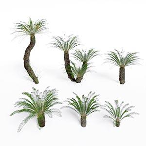 热带树3D模型-100101S70