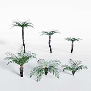 热带树3D模型-100101S71
