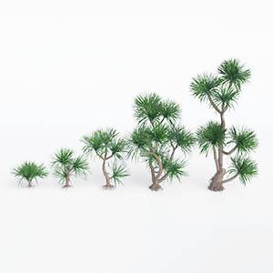 树3D模型-100101S72