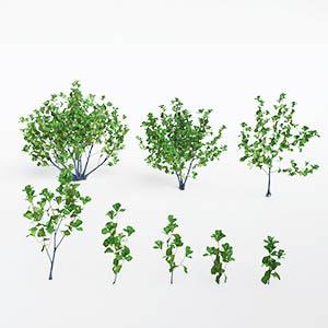 树3D模型-100101S73