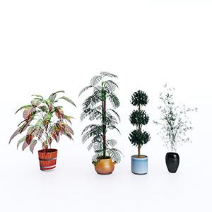 盆栽3D模型-1007P88