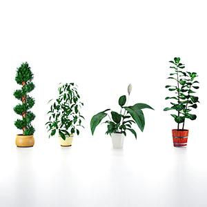 盆栽3D模型-1007P89