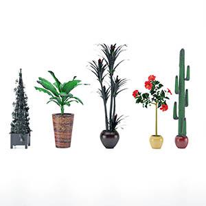 盆栽3D模型-1007P95