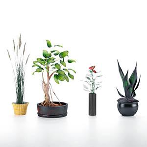 盆栽3D模型-1007P94