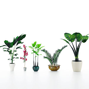 盆栽3D模型-1007P96