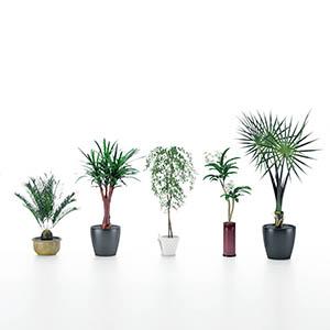 盆栽3D模型-1007P97