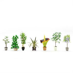 盆栽3D模型-1007P100
