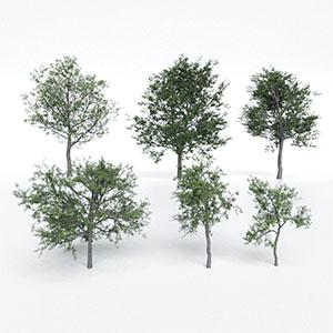 树3D模型-100101S77