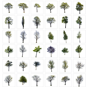 7K高清树平面素材-0602Z1